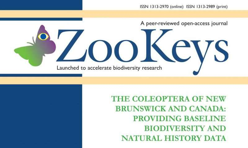 Over 300 new beetle records for New Brunswick, Canada, in a special issue of ZooKeys
