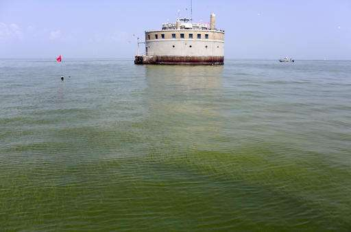 Report: Farmers doing too little to stop Lake Erie algae