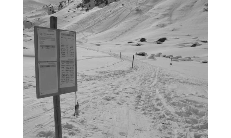 Risk of being involved in an avalanche less for smaller groups of recreationists