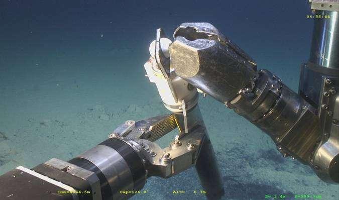 ROV collecting sediment core