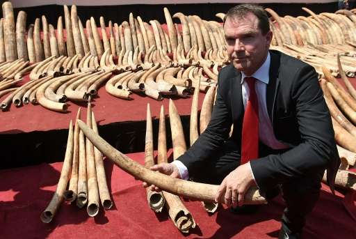 Secretary General of CITES (Convention on International Trade in Endangered Species) John E. Scanlon holds part of a cache of il