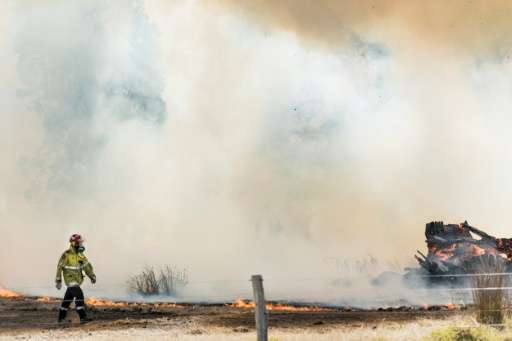 Since November huge swathes of Australia have been scorched by ferocious blazes, leaving a total of nine dead and hundreds of ho