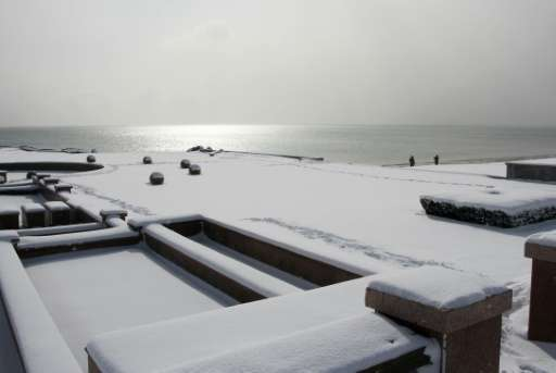 The snow-covered coast in the city of Rongcheng, in eastern China's Shandong province pictured on January 24, 2016