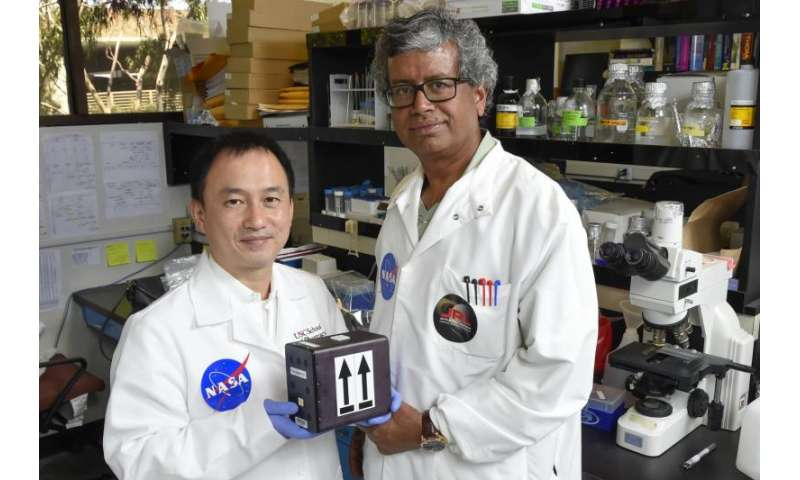 USC, JPL to launch fungi in journey to develop space meds
