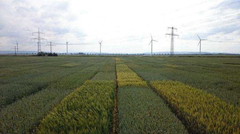 What a 'CERN' for agricultural science could look like