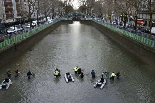 Workers remove fish from the canal Saint Martin in Paris on January 7, 2016 before a drainage and cleaning operation