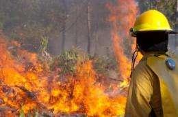 Researchers develop new bushfire warning device