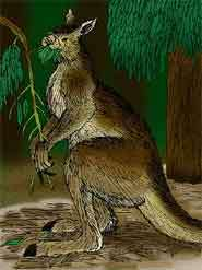 Early humans caused extinction of Australia's giant animals
