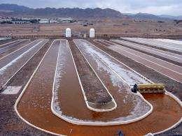 Sandia using pathogen detection technology for understanding algal pond collapse