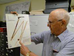 Academy authority on delta bulrush says 'his' plant could help ease oil spill crisis