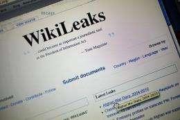 A hacker is taking credit for the Wikileaks takedown