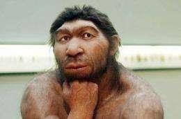 A study shows Neanderthals ate their veggies