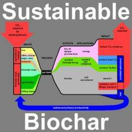 Biochar Production and Emission Offsets