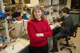 Biologists produce plants that detect environmental contaminants, explosives