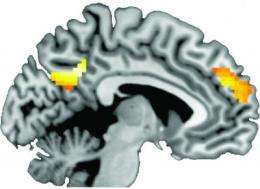 Certain parts of the brain activated in people who heard tailored health messages and quit smoking