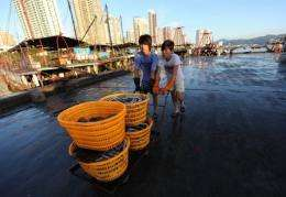 Chinese fishermen deliver their day's catch in southern China's Guangdong province