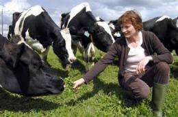 Choosing organic milk could offset effects of climate change