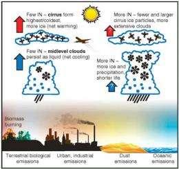 Clouds + Mineral Dust = Rain