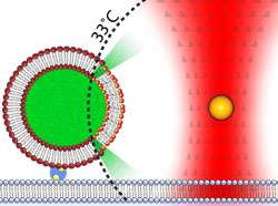Controlled heating of gold nanoparticles