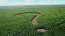 Corn syrup producers want s