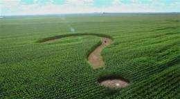 Corn syrup producers want sweeter name: corn sugar (AP)