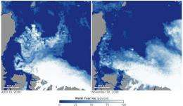 Role of melt in arctic sea ice loss found by NASA study