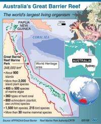 Graphic showing Australia's Great Barrier Reef.