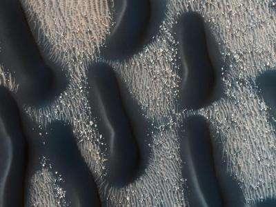 Image: Dark dune fields of proctor crater, Mars