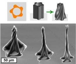 Intricate, curving 3-D nanostructures created using capillary action forces