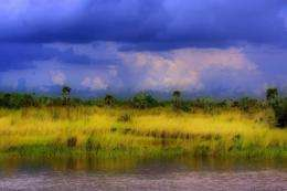 Land Deal Likely to Improve Everglades, Ecologists Say
