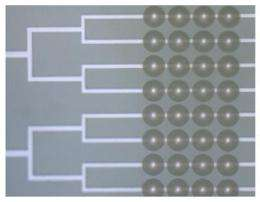 Marriage of microfluidics and optics could advance lab-on-a-chip devices