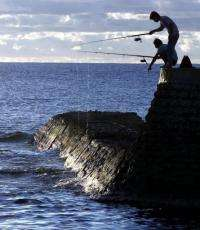 Nauruans compete for fish at the entrance to the harbour of the island state