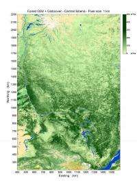 New boreal forest biomass maps produced from radar satellite data