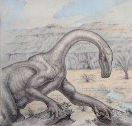 New fossil suggests dinosaurs not so fierce after all