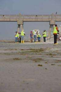New materials invention for oil spill clean-Up