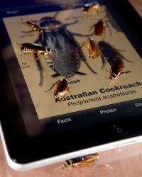 New UF cell phone 'app' lets users identify pests with photos, text