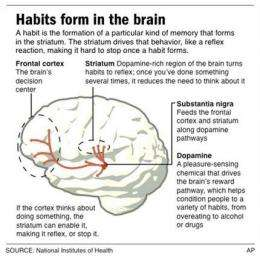New Year's resolutions? Brain can sabotage success (AP)