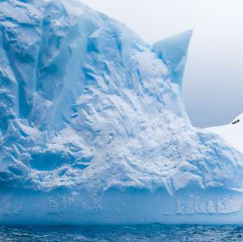 Past Antarctic cooling may help studies of global warming