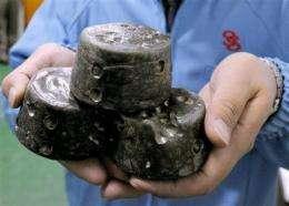 Premier: China won't block rare earth exports (AP)