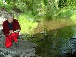Retiree environmental volunteers less depressed