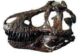 Scientific understanding of T. rex revised by a decade of new research and discovery