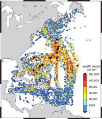 SEA researchers find widespread floating plastic debris in the western North Atlantic Ocean