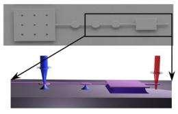 Sensitive nano oscillator can detect pathogens