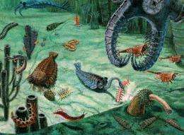 Skeletons in the pre-Cambrian closet