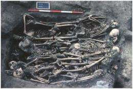 Spain's typhus epidemic revealed by 18th century skeletons