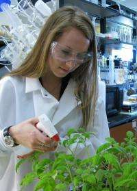 Student research team sequences genome of bacterium discovered in Virginia Tech garden