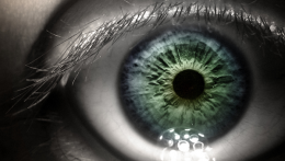 To restore vision, implant preps and seeds a damaged eye
