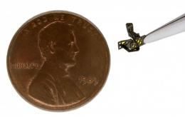 Cracking flight's mysteries: It's a bird, it's a plane, it's a microrobot