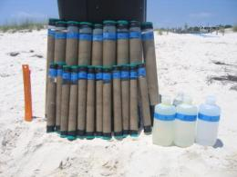 How fast can microbes break down oil washed onto Gulf beaches?