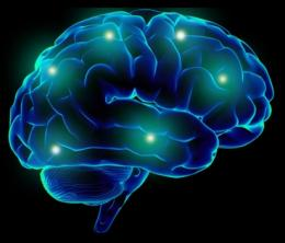 Illuminating the brain: Technique stimulates brain cells, reveals how those neurons influence the rest